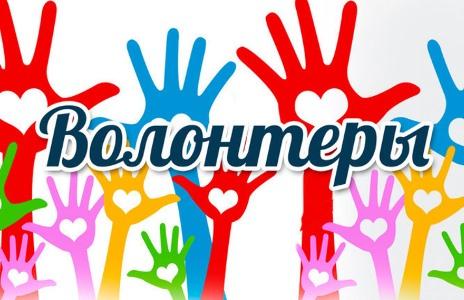 Эссе волонтерское движение в россии 1843